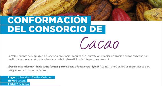 9-05-2018-consorcio-de-cacao-del-cr